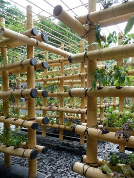 bamboo hydro